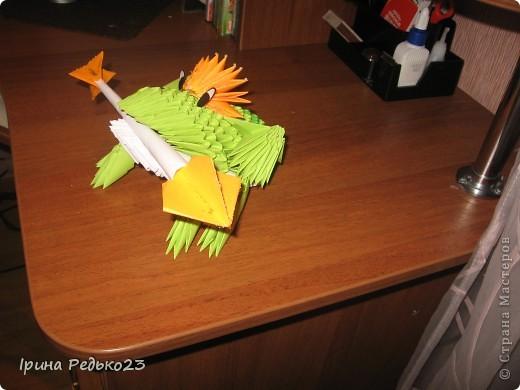 Моя лягушка фото 2