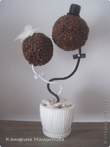 Вдохновившись нежными и изысканными работами Наташеньки http://stranamasterov.ru/user/118439 состворила такой вот топиарий - подарочек ко дню свадьбы: фото 2