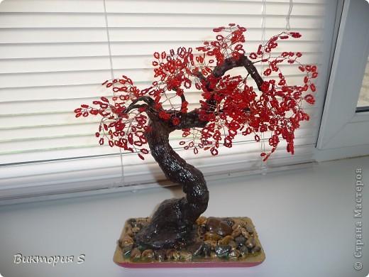 В Год Дракона сотворила деревце одноименное.  фото 3