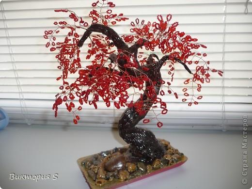 В Год Дракона сотворила деревце одноименное.  фото 4