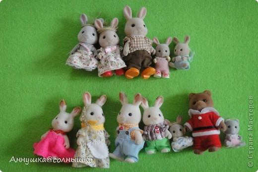 Моя коллекция Sylvanian Families. Все началось с малыша зайчика.Потом стало всё больше и  больше и  сейчас у меня 46   (на фото не все)    фото 2