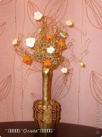 Как я мандариновое деревце соорудила... фото 12