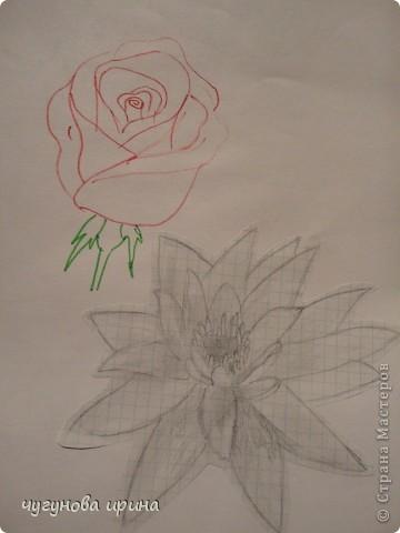 мои рисунки (часть2) фото 6