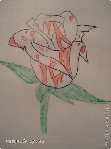 мои рисунки (часть2) фото 14