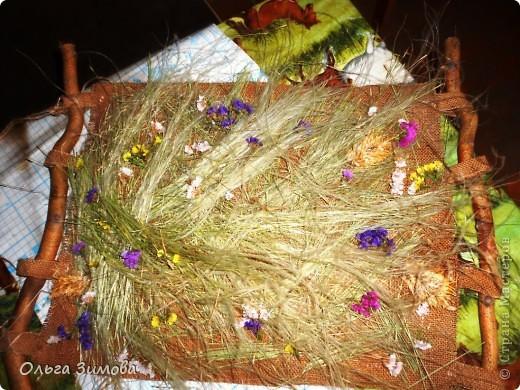 Это панно выполнено полностью из природного материала.Процесс изготовления очень простой. Главное иметь заготовки сухих трав, цветов.А там, каждый включает фантазию и понеслось...... фото 11