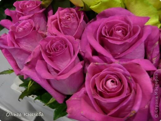 Здесь будут, в основном,  розы фото 7