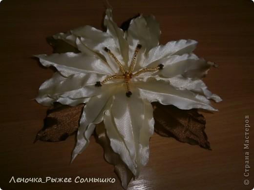 Первая рамочка) И еще цветочки ... фото 4