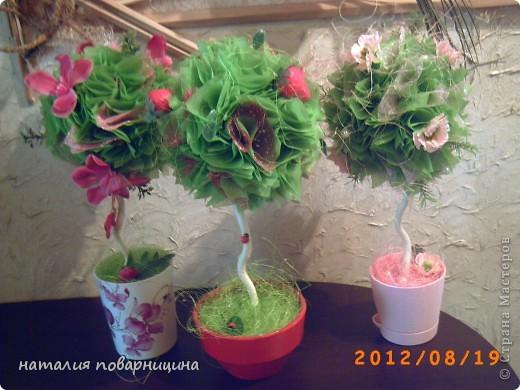 """""""Свадебное"""" ДЕРЕВЦЕ фото 9"""