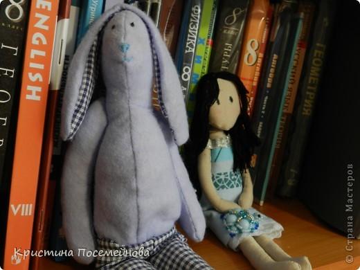Вот такие игрушки сшились у меня. фото 1