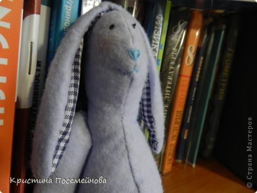 Вот такие игрушки сшились у меня. фото 4