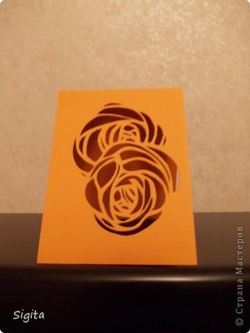 Розы. Копии. фото 8