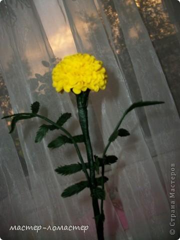Здравствуйте всем! Это мой первый цветок,поэтому прошу строго не судить.  фото 1