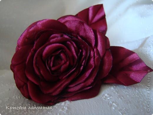 Давно заглядывалась на изумительные розы Ольги http://stranamasterov.ru/user/137017 Вот и представился случай. Нужно было сделать ободочек на подарок и вот что получилось. Конечно, до оригинала далеко, но... уверена эта не последняя)))))))))) фото 1