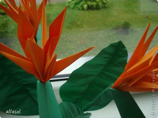 Продолжаю подготовку к выставке цветов оригами. Розы Кавасаки я уже делаю не в первый раз.  http://stranamasterov.ru/node/198800  фото 9