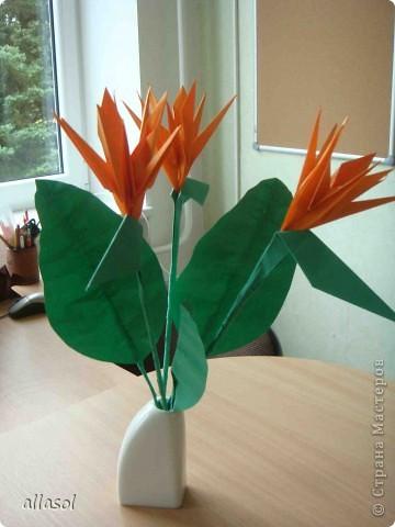 Продолжаю подготовку к выставке цветов оригами. Розы Кавасаки я уже делаю не в первый раз.  http://stranamasterov.ru/node/198800  фото 6