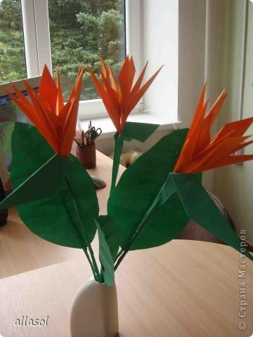 Продолжаю подготовку к выставке цветов оригами. Розы Кавасаки я уже делаю не в первый раз.  http://stranamasterov.ru/node/198800  фото 8