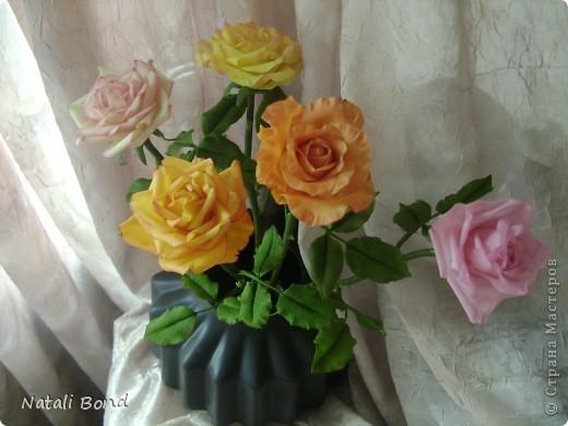 Рада видеть ВСЕХ!!!!!Вот сделала розы по просьбе, надеюсь понравятся)))))Приятного просмотра!!!!Будет приятно услышать Ваше мнение!!!! фото 1