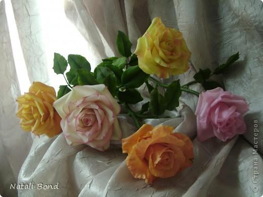 Рада видеть ВСЕХ!!!!!Вот сделала розы по просьбе, надеюсь понравятся)))))Приятного просмотра!!!!Будет приятно услышать Ваше мнение!!!! фото 3