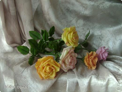 Рада видеть ВСЕХ!!!!!Вот сделала розы по просьбе, надеюсь понравятся)))))Приятного просмотра!!!!Будет приятно услышать Ваше мнение!!!! фото 4