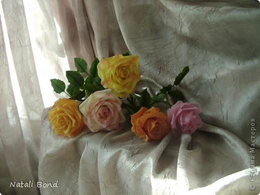Рада видеть ВСЕХ!!!!!Вот сделала розы по просьбе, надеюсь понравятся)))))Приятного просмотра!!!!Будет приятно услышать Ваше мнение!!!! фото 5