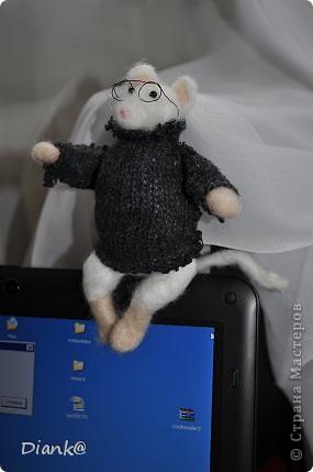 Мышь в очках