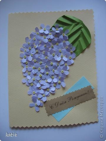 Мои первоцветы. Сперва хотела их сделать в рамочке, потом вспомнила, что скоро будут праздники и сделала эту открытку. фото 2