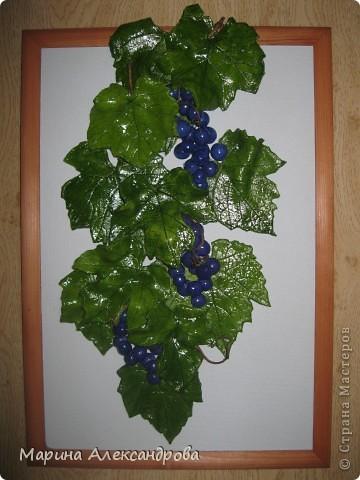 Здравствуйте дорогие мастерицы! Сегодня снова я к вам с виноградом, очень понравилось его лепить...за идею спасибо Марине Архиповой, в своих работах  пользуюсь живыми листьями...рисунок натуральный, притягивает взгляды!!! Работу делала на заказ...размер рамы 30/45...спасибо дорогие за комментарии и отзывы! Любую критику приму...Хорошего всем настроения и здоровья Вам и вашим близким! фото 3
