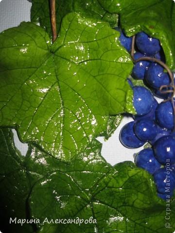 Здравствуйте дорогие мастерицы! Сегодня снова я к вам с виноградом, очень понравилось его лепить...за идею спасибо Марине Архиповой, в своих работах  пользуюсь живыми листьями...рисунок натуральный, притягивает взгляды!!! Работу делала на заказ...размер рамы 30/45...спасибо дорогие за комментарии и отзывы! Любую критику приму...Хорошего всем настроения и здоровья Вам и вашим близким! фото 2