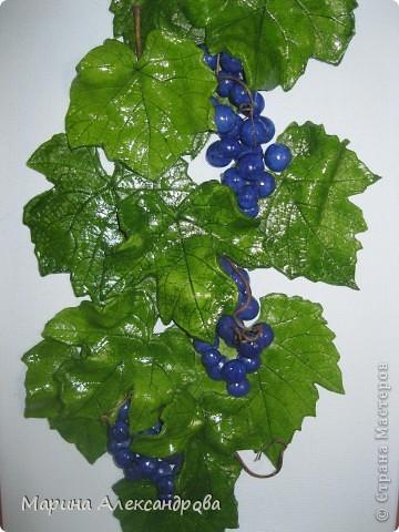 Здравствуйте дорогие мастерицы! Сегодня снова я к вам с виноградом, очень понравилось его лепить...за идею спасибо Марине Архиповой, в своих работах  пользуюсь живыми листьями...рисунок натуральный, притягивает взгляды!!! Работу делала на заказ...размер рамы 30/45...спасибо дорогие за комментарии и отзывы! Любую критику приму...Хорошего всем настроения и здоровья Вам и вашим близким! фото 1