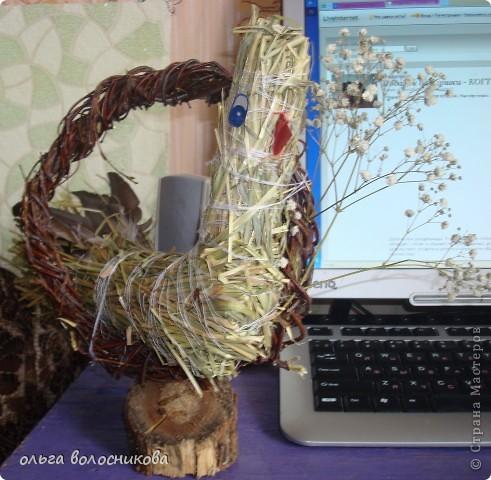 Птичка выполнена из сена,круг сплела из березовых веток. фото 1