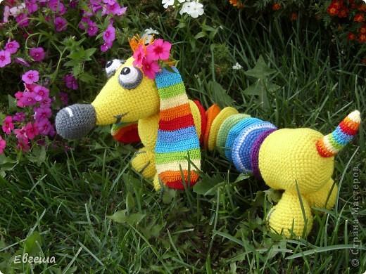 Любопытная Радужка вышла погулять по саду фото 6