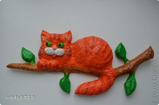 Кот на шарах фото 2