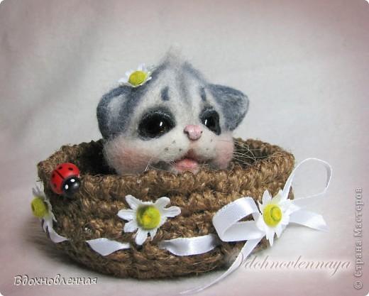 Долго не могла определить, что же я хочу сделать для мамі... Кролика делала, котенка тоже.. Птичка была.. Но, все равно, решила остановиться на теплом и пушистом, на том, что бы душу согрел, при одном всзгляде.. Ну кто же это может быть, как не котенок))) фото 1