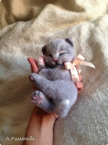 спящий котенок:) 16 см фото 3