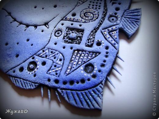 Синюха голубая фото 4