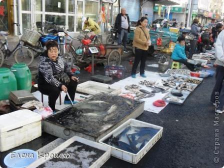 Приглашаю в Китайский город Хайхе. фото 56