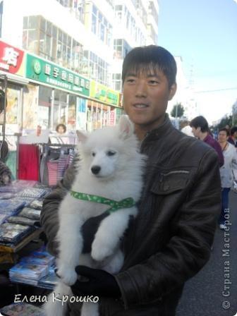 Приглашаю в Китайский город Хайхе. фото 58