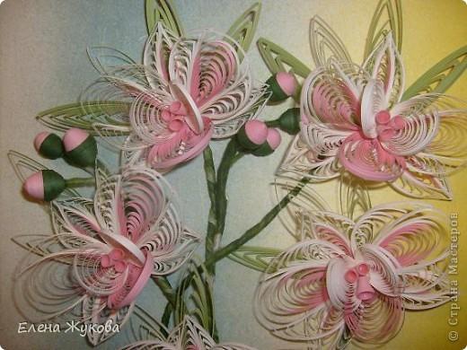 Доброго времени суток, дорогие мастерицы. Сегодня я к вам с орхидеями фото 3