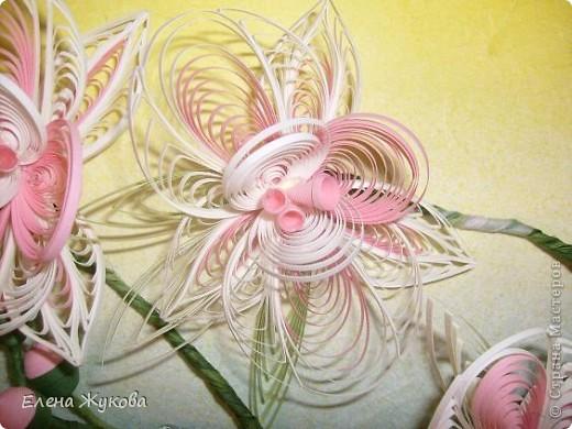 Доброго времени суток, дорогие мастерицы. Сегодня я к вам с орхидеями фото 5