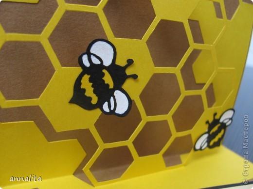 Вот такая пчелиная открыточка у меня сотворилась на днях.  Внутренняя часть - любимая мною техника pop-up. фото 9