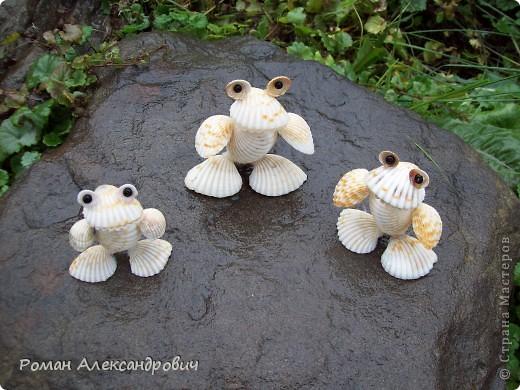 Лягушата из ракушек фото 5