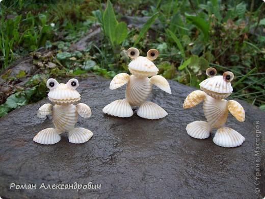 Лягушата из ракушек фото 4