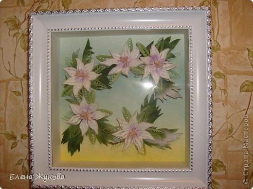 здравствуйте, дорогие мои! я опять к вам с квиллингом, если еще не надоела... сегодня -простые белые цветы, даже не знаю, что за цветы фото 1