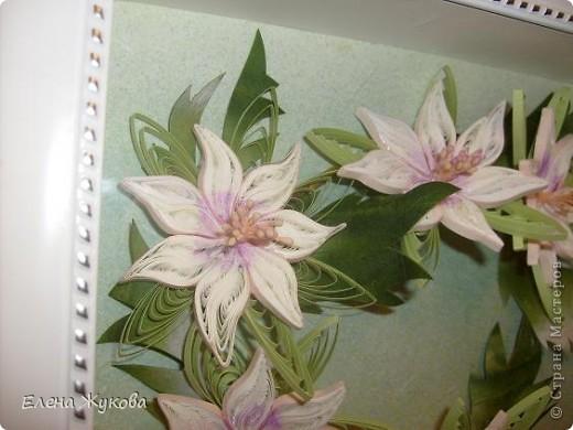 здравствуйте, дорогие мои! я опять к вам с квиллингом, если еще не надоела... сегодня -простые белые цветы, даже не знаю, что за цветы фото 4
