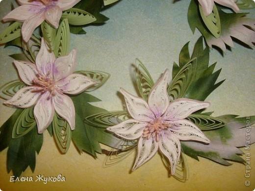 здравствуйте, дорогие мои! я опять к вам с квиллингом, если еще не надоела... сегодня -простые белые цветы, даже не знаю, что за цветы фото 3