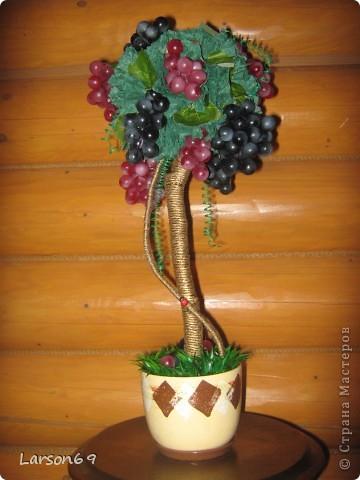 Виноградное дерево- Топиарий фото 1
