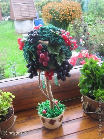Виноградное дерево- Топиарий фото 3