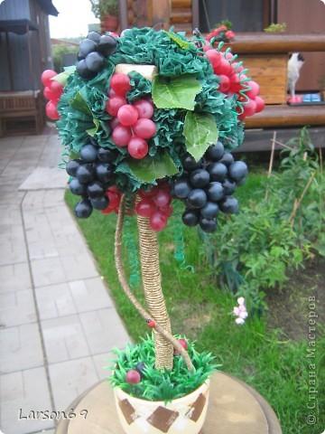 Виноградное дерево- Топиарий фото 2