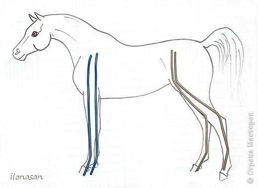 Лошадь из шерсти Сложность работы: выше средней Время работы: 15-20 дней Здравствуйте, Дорогой любитель лошадей и творчества! Предлагаю сделать своими руками скульптурную лошадь из шерсти. Общая высота Златы 23 см, высота в холке 17 см, длина 25 см. фото 30
