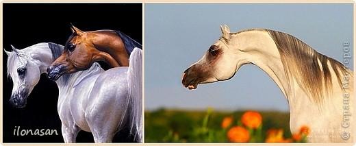 Лошадь из шерсти Сложность работы: выше средней Время работы: 15-20 дней Здравствуйте, Дорогой любитель лошадей и творчества! Предлагаю сделать своими руками скульптурную лошадь из шерсти. Общая высота Златы 23 см, высота в холке 17 см, длина 25 см. фото 8